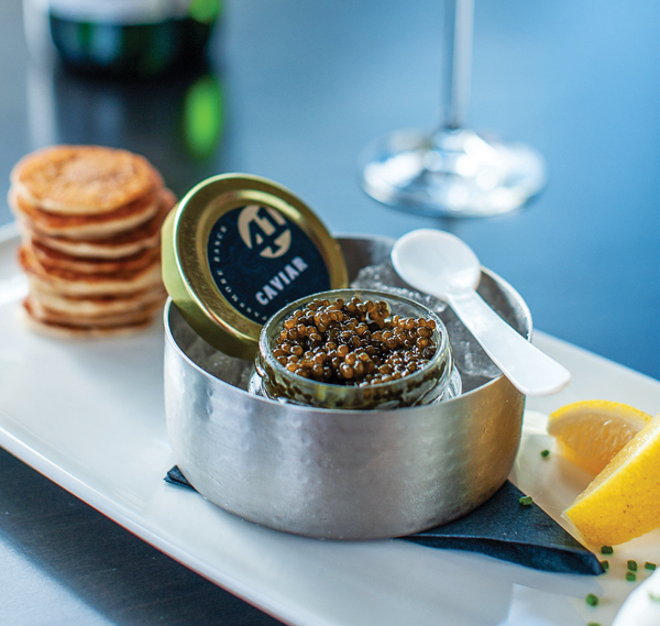 Passmore Ranch's Circle 41 Caviar