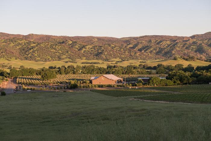 Seka Hills Olive Mill