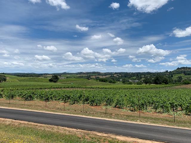 amador wine county