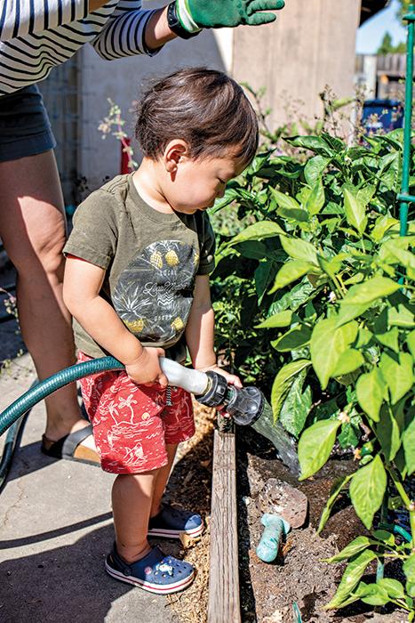 little boy gardens