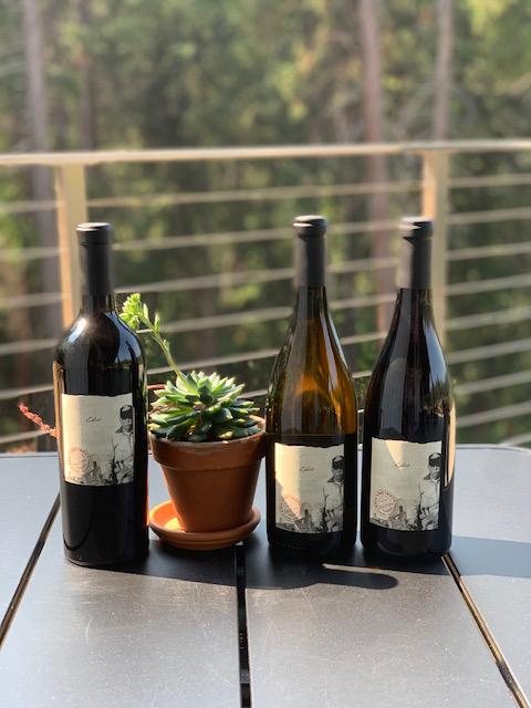 edio wines