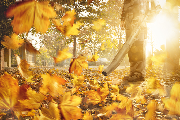 leaf and lawn blower