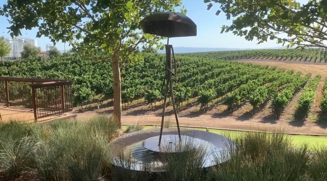 matchbook winery participating in Yolo Wine Ramble